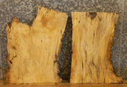 2- Natural Edge Spalted Maple End/Side/Entry Table Top Wood Slabs 14356,14376