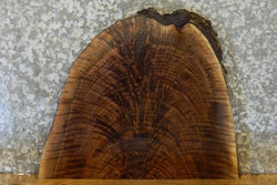 Rustic Live Edge Black Walnut End Table Top Slab 14420