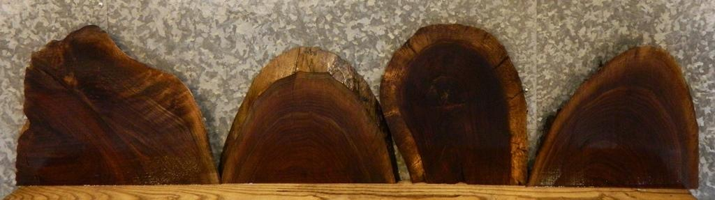 4- Black Walnut Partial Natural Edge Taxidermy Base/Craft Pack Slabs 14457-14458,14463-14464