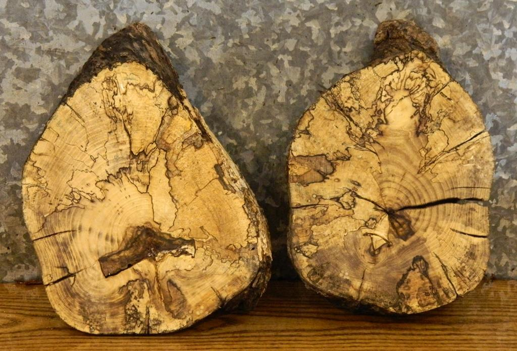 2- Live Edge Round Cut Hackberry Cenerpiece Wood Slabs 14548-14549