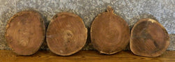 4- Rustic Round Cut Tree Log Slice Black Walnut Centerpiece Slabs 14558-14561