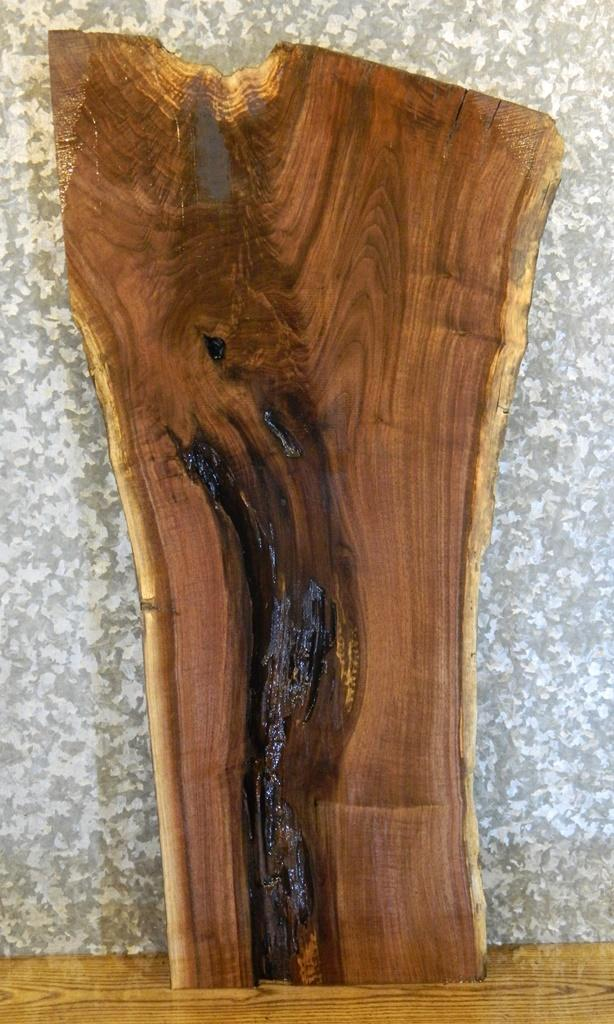 Salvaged Live Edge Black Walnut Side/Accent/End Table Top Wood Slab 1551