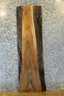 Partial Live Edge Black Walnut Side/End/Sofa Table Top Slab 1713