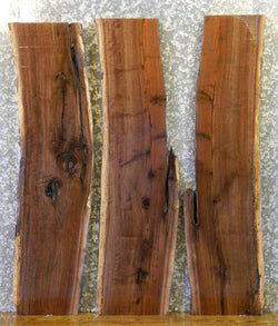3- Live Edge Black Walnut Bookmatched Side/Sofa Table Top Slabs 1831-1833