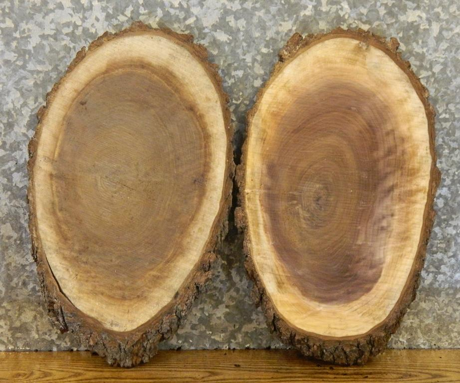 2- DIY Black Walnut Oval Cut Live Edge Charcuterie Boards/Wood Slabs 1873-1874