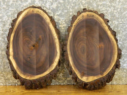 2- Black Walnut Live Edge Oval Cut Centerpiece Rustic Wood Slabs 1875-1876
