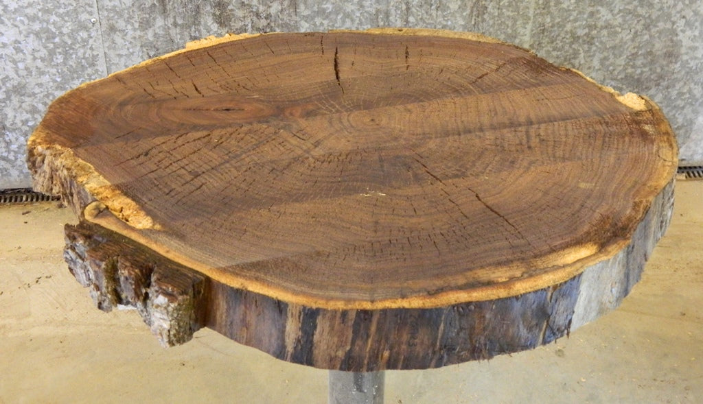 Side/End Table Top Natural Edge Black Walnut Round Cut Wood Slab 20923