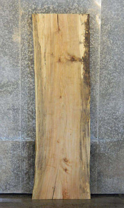 Live Edge Rustic Spalted Maple Bar/Table Top Wood Slab 278