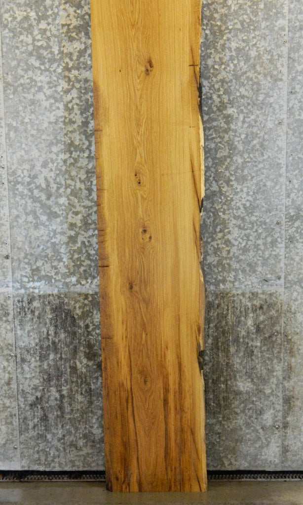 Rustic White Oak Thick Cut Partial Live Edge Long Mantel Slab 307