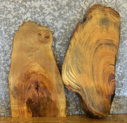 2- Partial Live Edge Locust Charcuterie Boards/Craft Pack Slabs 40326,40369