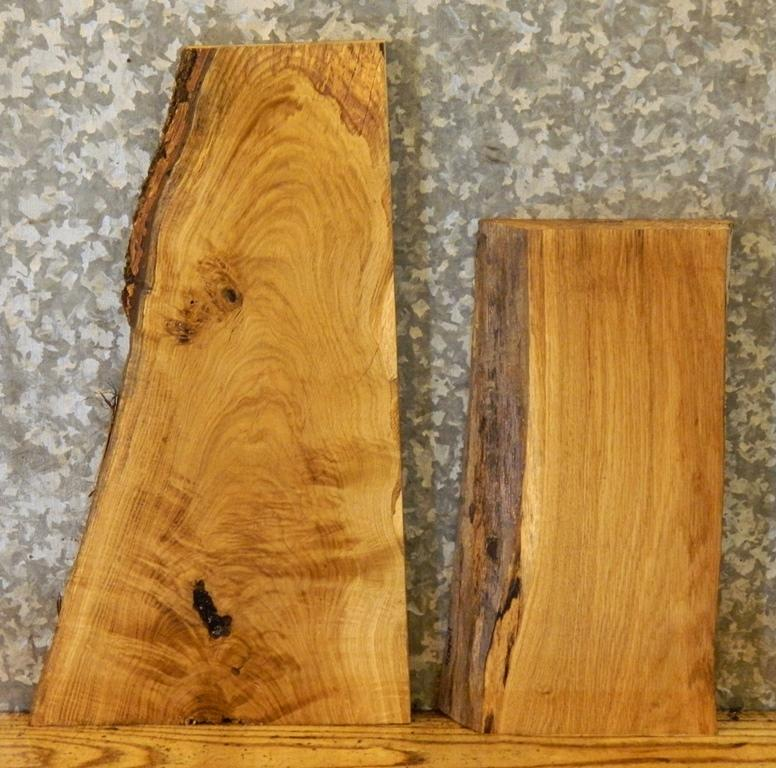 2- Partial Natural Edge White Oak Taxidermy Base Rustic Wood Slabs ** 40463-40464