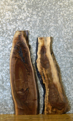 2- Salvaged Live Edge Black Walnut DIY Charcuterie Boards/Slabs 40467-40468