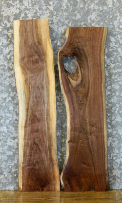 2- Salvaged Live Edge Black Walnut Craft Pack/Taxixermy Bases 40555-40556