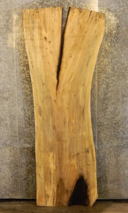 Head/Footboard/Bar Top Natural Edge Spalted Maple Rustic Wood Slab 40572