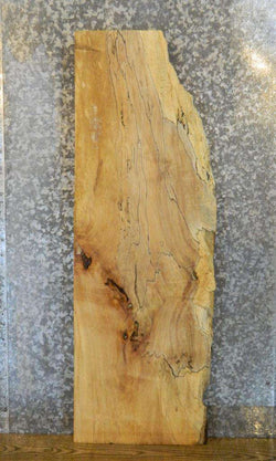 Partial Live Edge Spalted Maple Coffee/Sofa Table Top Slab 4106