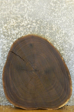 Reclaimed Live Edge Black Walnut Round Cut Table Top 42241