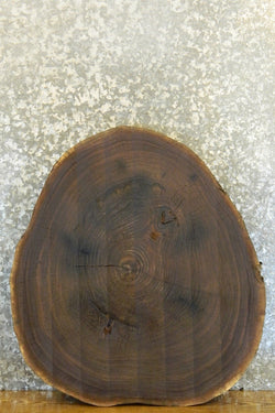 Round Cut Rustic Black Walnut Live Edge Table Top Slab 42243