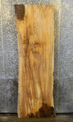 Rustic Natural Edge Spalted Maple Cocktail Table Top/Headboard Slab 4361