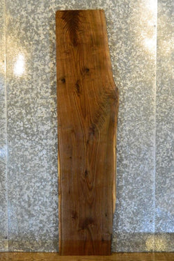 Partial Live Edge Black Walnut Rustic Sofa Table Top Slab 4469