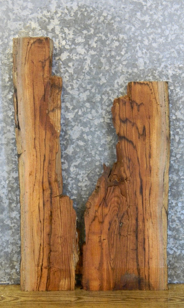 2- Rustic Red Oak Live Edge Craft Pack/Taxidermy Base Slabs 5109-5110