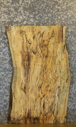 Salvaged Natural Edge Spalted Maple Side/End Table Top Wood Slab B4 5267