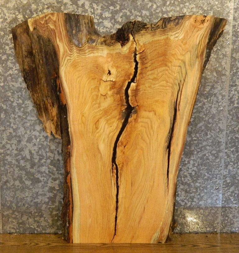 Rustic Live Edge Locust Coffee/Sofa/Accent Table Top Wood Slab 5306