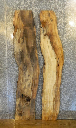2- Spalted Maple Live Edge Rustic Mirror Boards/Side Table Top Slabs 533-534