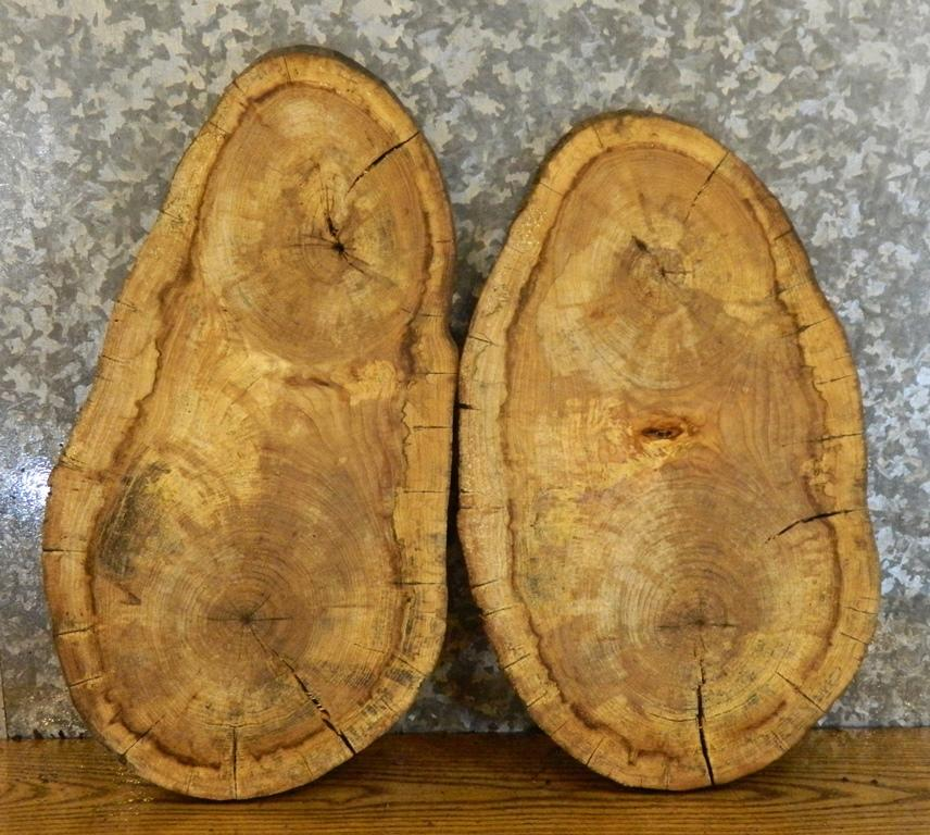2- Live Edge Oval Cut Hackberry Clock Plaques/DIY Charcuterie Boards 6063-6064