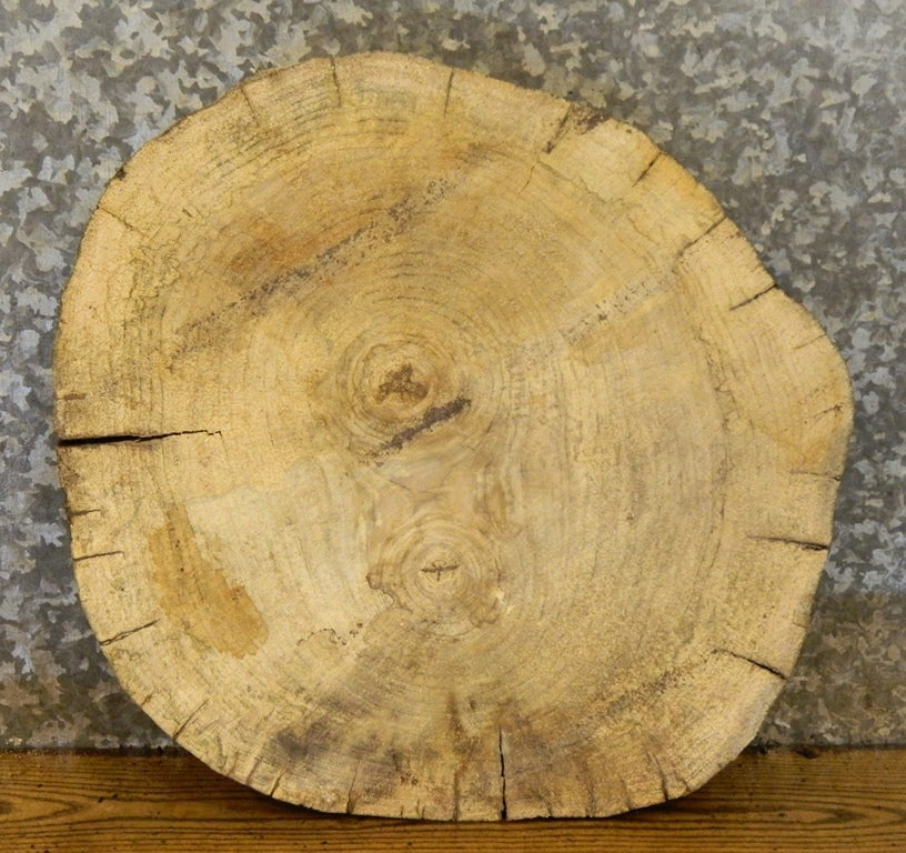 Hackberry Wedding Cake Stand Live Edge Round Cut Wood Slab 6384