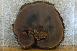 Live Edge Bark Round Cut Black Walnut End Table Top 6478