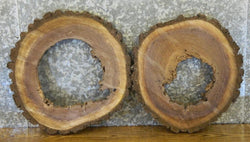 2- Live Edge Round Cut Black Walnut Pond/End Table Top Wood Slabs 6498-6499