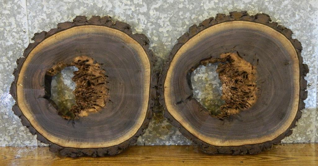 2- Reclaimed Round Cut Rustic Wall Art Black Walnut Wood Slabs 6525-6526