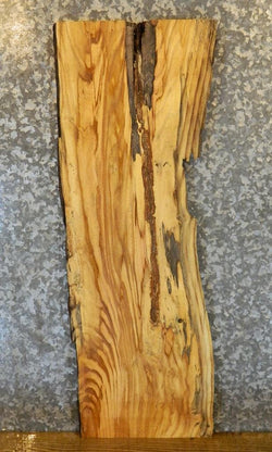 Natural Edge Locust Side/End/Entry Table Top Salvaged Wood Slab 663