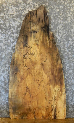 Spalted Maple Live Edge Side/Entry/End Table Top Salvaged Wood Slab 692