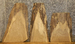 3- Natural Edge White Oak End Table/Taxidermy Base Wood Slabs 7811,7817,7819