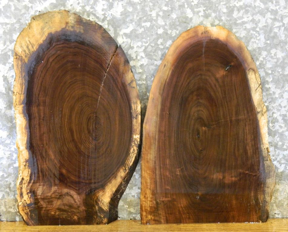 2- Reclaimed Live Edge Black Walnut Taxidermy Base/Craft Pack Slabs 7884-7885