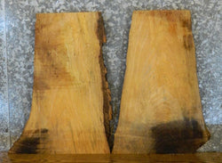 2- DIY Natural Edge Ash Rustic Charcuterie Boards/End Table Top Slabs 8153-8154