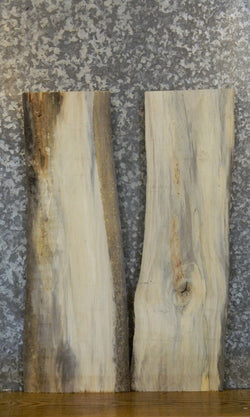 2- Rustic Live Edge Cottonwood End/Entry Table Top Wood Slabs 8261-8262