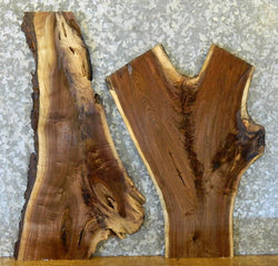 2- DIY Live Edge Black Walnut Charcuterie/Delicatessen Boards/Slabs 8325-8326