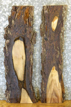 2- DIY Natural Edge Salvaged Black Walnut Charcuterie Boards/Slabs 8456-8457