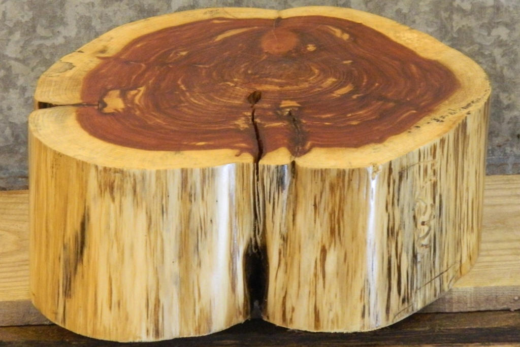 red cedar stump furniture