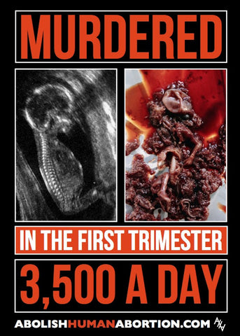 Murdered in the First Trimester (30.5 X 42 mounted Sign)