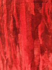 Red sheared beaver fur plate #40