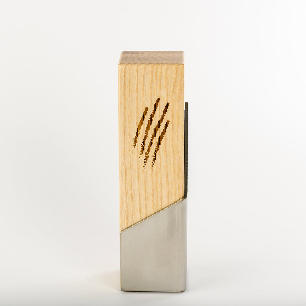 Custom communication award_stainless steel wood award with laser engraving and UV digital print_custom design_Awards and Medal Studio