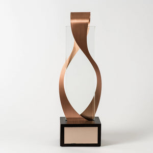 Custom premium class bronze glass metal wood award RO10 awards and medal studio