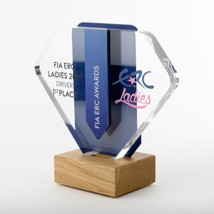 Striking bespoke acrylic aluminium wood award_ digital print_Awards and Medal Studio 2