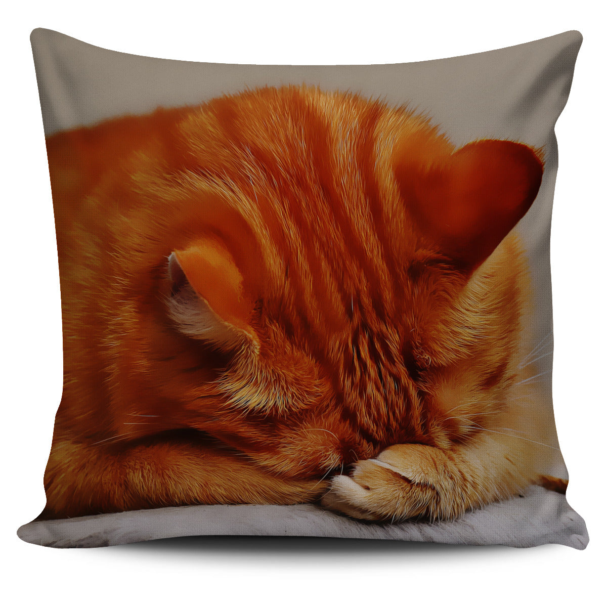 Pillow Cover Ginger Cat Sleeping Painted