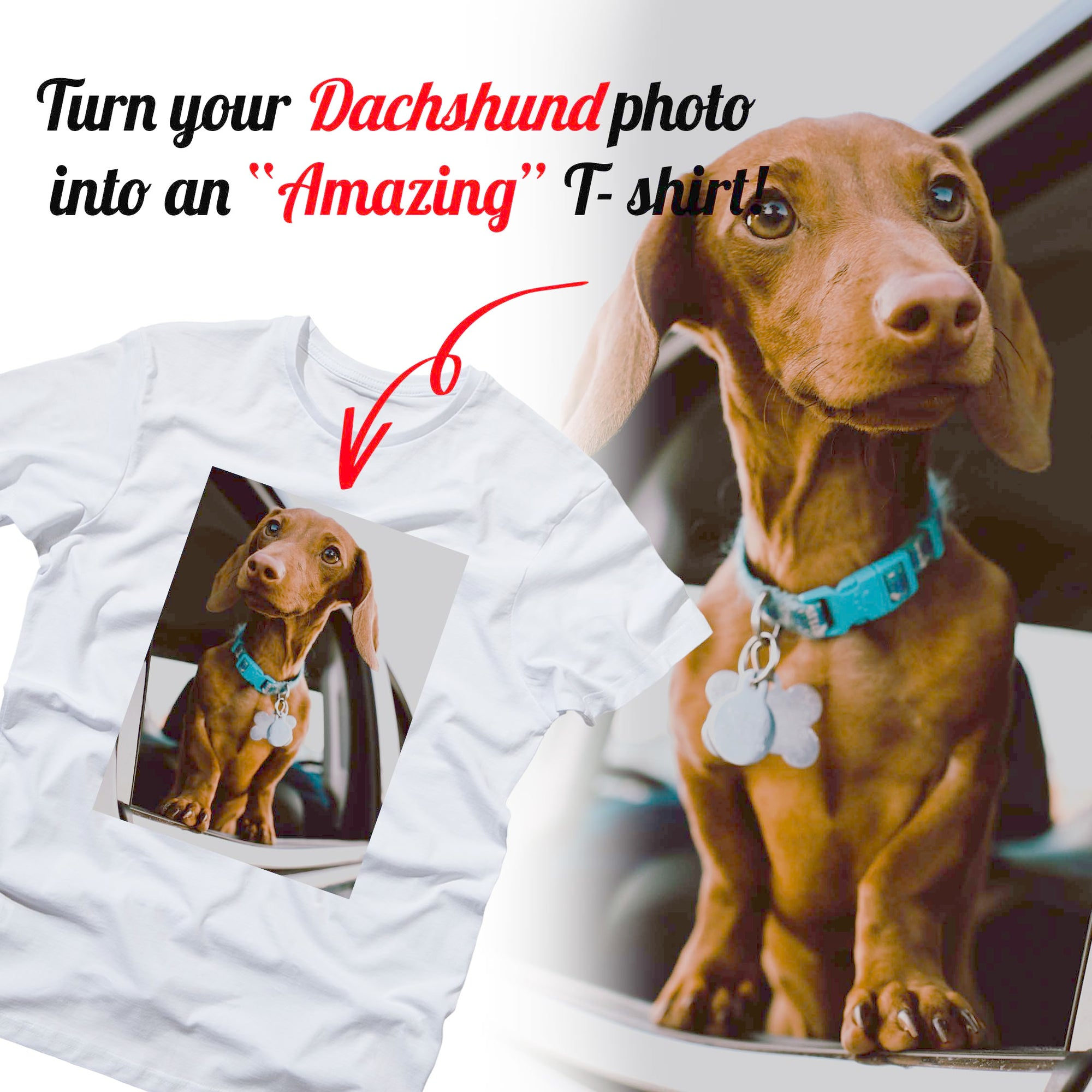 PERSONALIZED unisex t-shirt - upload your DACHSHUND photos