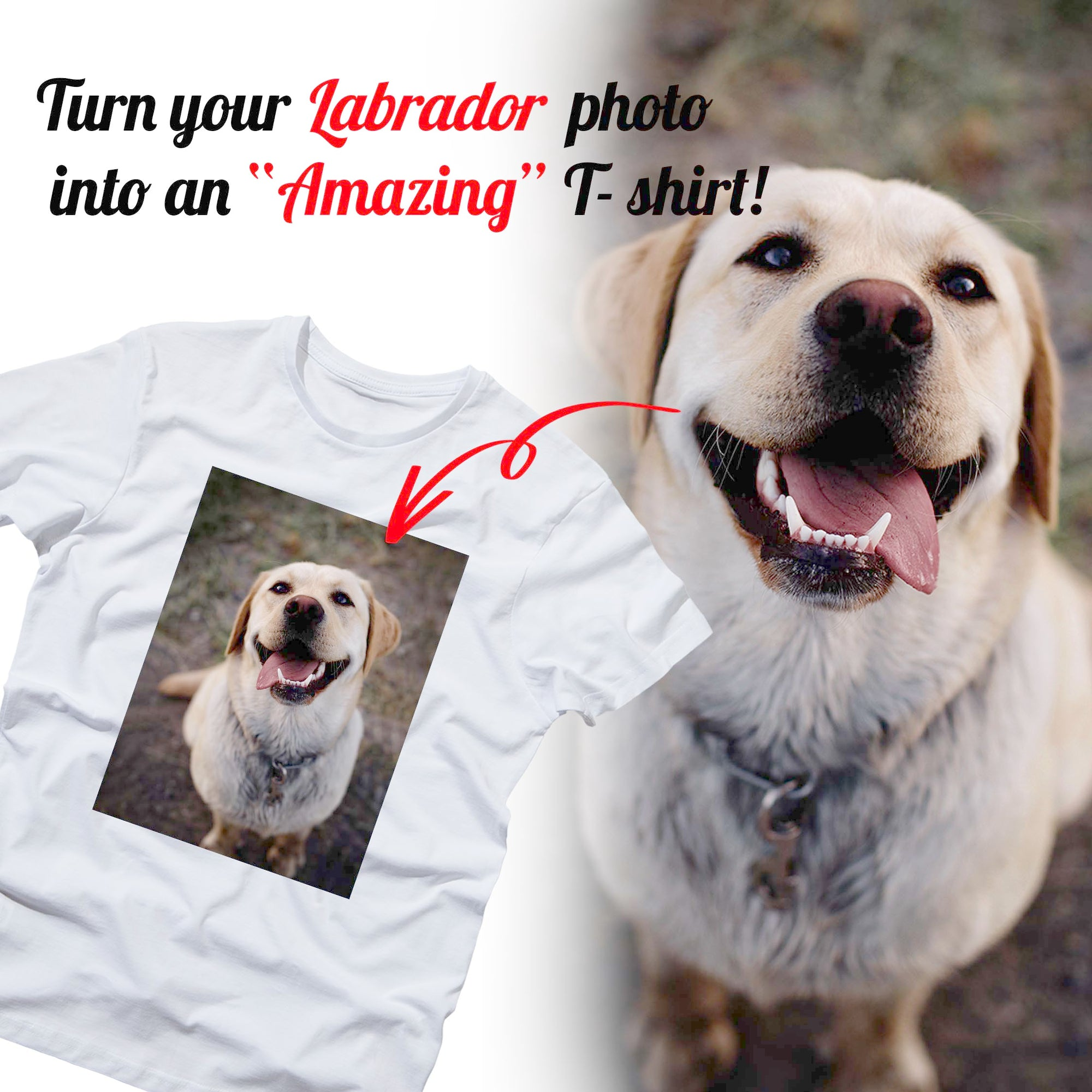 PERSONALIZED unisex t-shirt - upload your LABRADOR photos