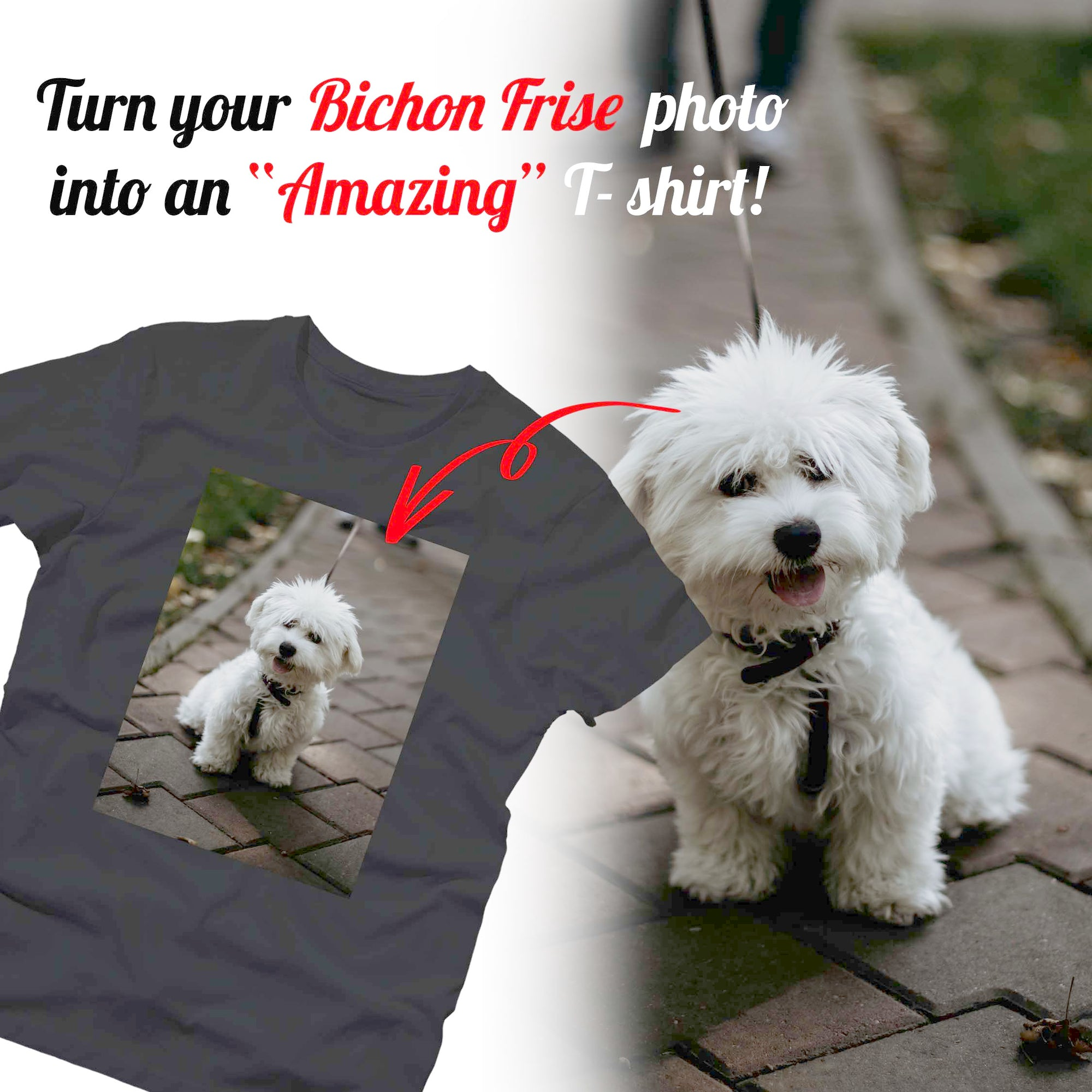 PERSONALIZED unisex T-shirt - upload your BICHON FRISE photos